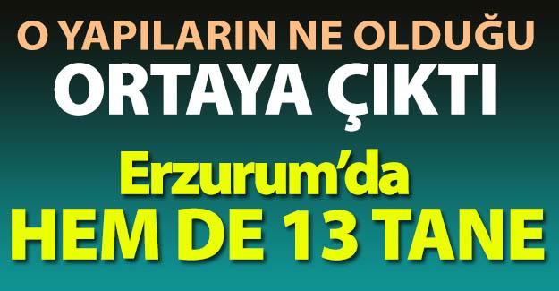 Erzurum'da hem de 13 tane!..