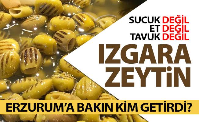 Izgara zeytini Erzurum'a getirdi!
