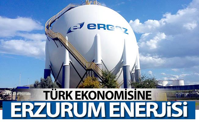 Türk ekonomisine Erzurum enerjisi