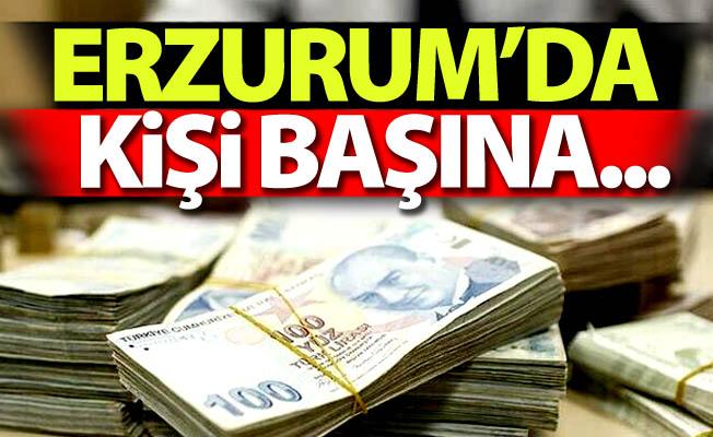 Erzurum'da kişi başına...