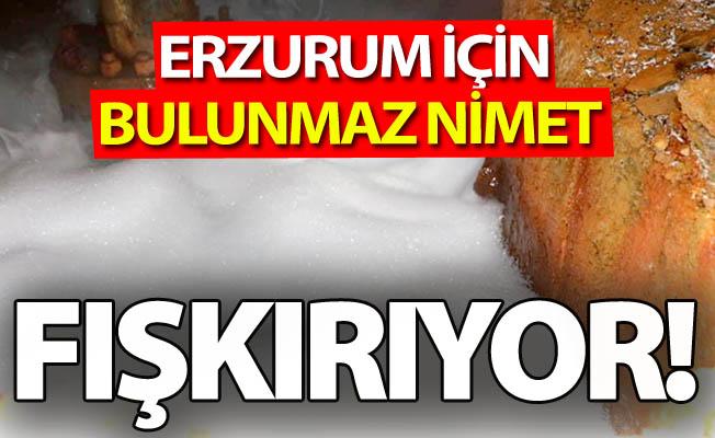 Erzurum için bulunmaz nimet!