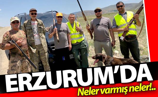Türkiye'de sadece Erzurum'daymış!
