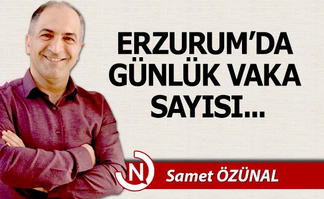 Erzurum'da günlük vaka sayısı...