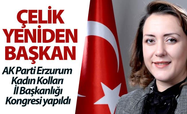 AK kadınlara Çelik başkan...