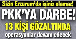 PKK'ya Erzurum'da darbe!