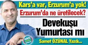 Erzurum'da ne üretilecek?