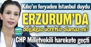 Erzurum için doğalgaz sorusu