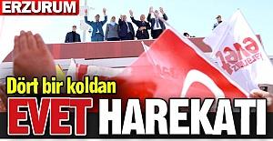 """Erzurum'da """"EVET"""" harekatı"""