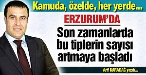 Erzurum'da da sayıları artıyor!