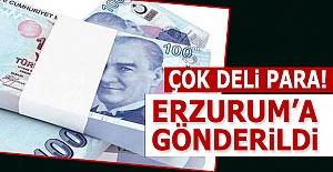 Tamamı Erzurum#039;a gönderildi