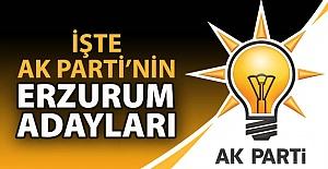 İşte AK Parti'nin Erzurum adayları!..
