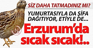Erzurum'da sıcak sıcak!..