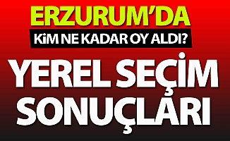 Erzurum'da kim ne kadar oy aldı?