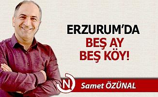 Erzurum'da beş ay, beş köy!