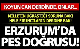 Erzurum'da düşündüren zam!