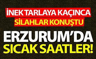 Erzurum'da silanlar konuştu!