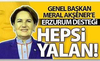 Akşener'e Erzurum desteği