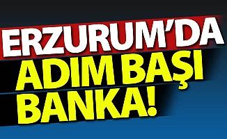 Erzurum'da adım başı banka!