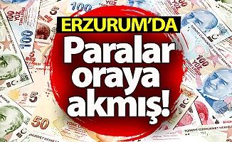 Erzurum'da paralar oraya akmış!