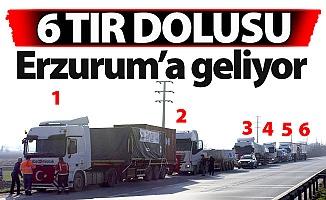TIR'lara yüklendi, Erzurum'a geliyor!..