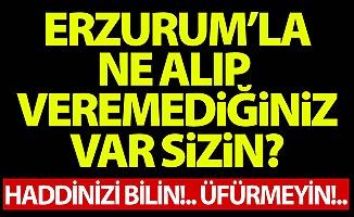 Aydemir'den HDP'ye Erzurum tepkisi!