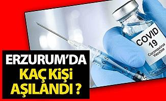 Erzurum'da kaç kişi aşılandı?