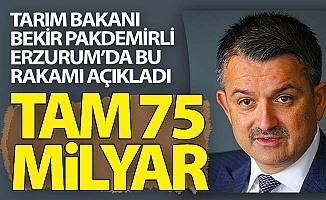 Pakdemirli Erzurum'da açıkladı