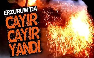Erzurum'da cayır cayır yandı!