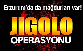 Polis'ten jigolo operasyonu