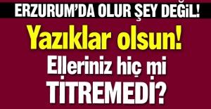 Erzurum'da bu da oldu ya!