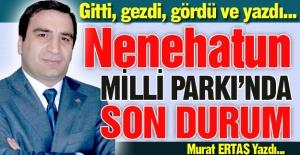 İşte o Milli Park Projesi...