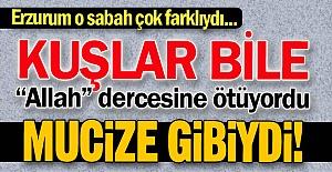 Erzurum'daki mucize sabah...