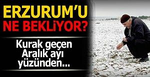 Erzurum'u ne bekliyor?