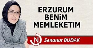 Erzurum benim memleketim