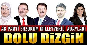 AK Partili adaylar dolu dizgin