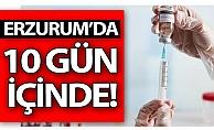 Erzurum'da 10 gün içinde...