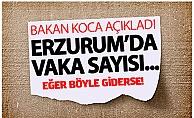 Erzurum#039;da vaka sayısı...